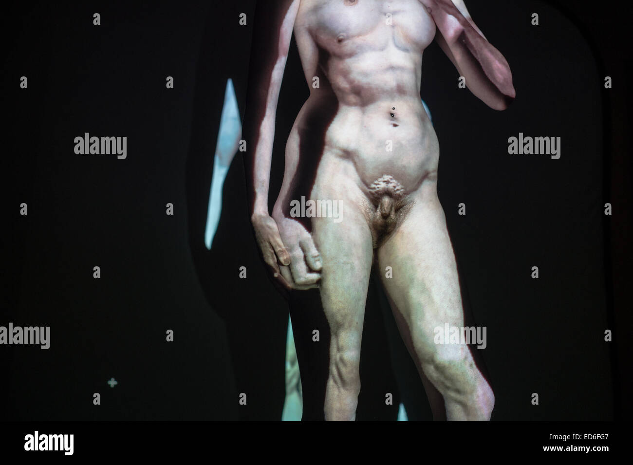 male-transgender-nude