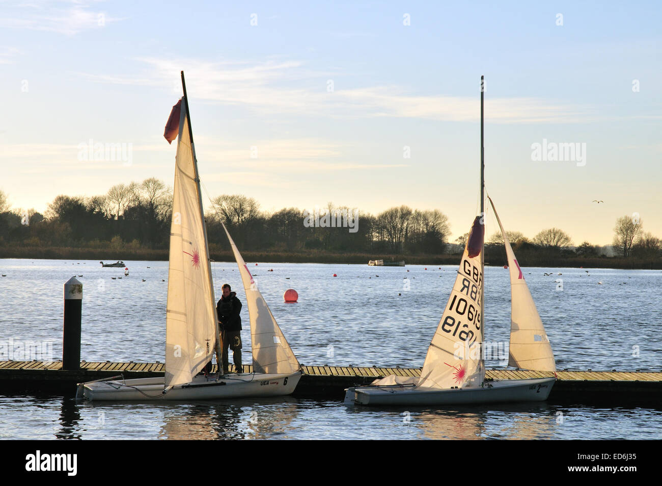 Man getting sail boats ready to sail - Stock Image