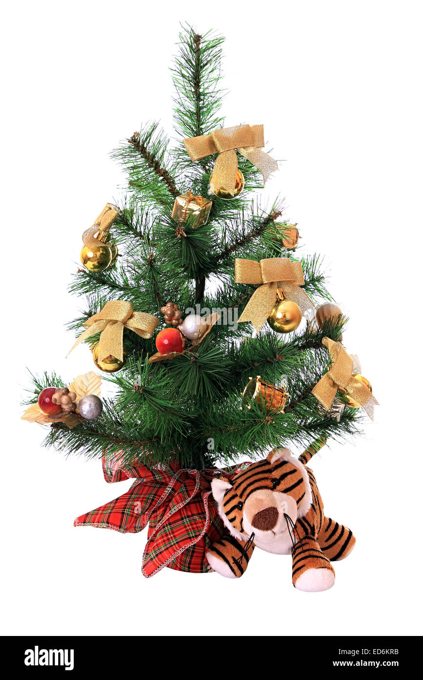 Tiger cub under the new-year tree. - Stock Image