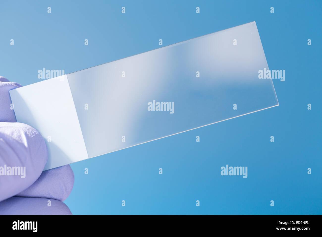 Empty Microscopy slide in hand Stock Photo