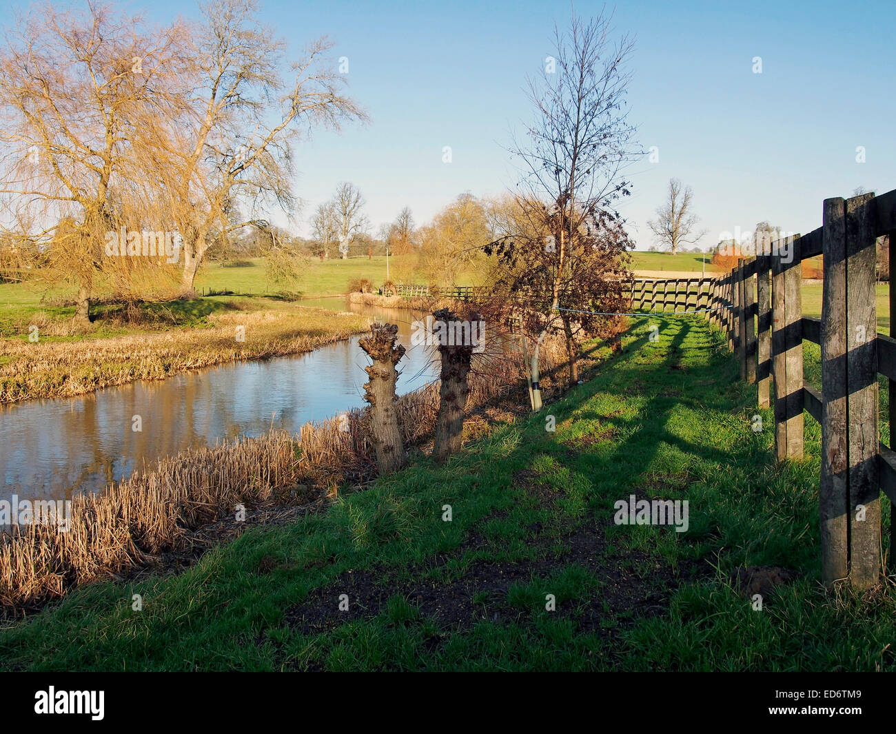 A bright & sunny winter scene on the River Colne between Colne St Aldwyns and Hatherop in Gloucestershire,, - Stock Image