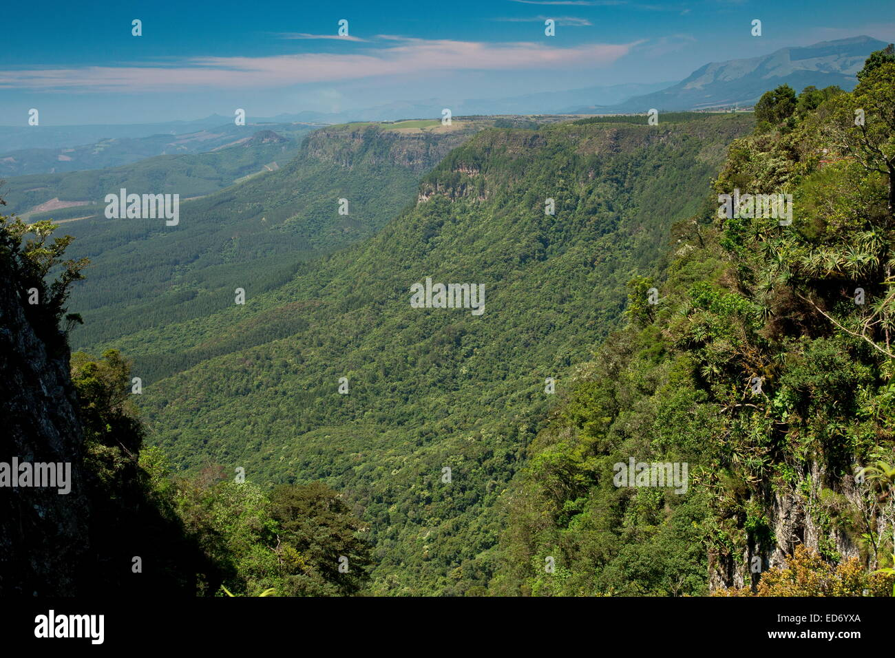 View of the east-facing scarp of the Northern Drakensberg Mountains at God's Window; South Africa - Stock Image