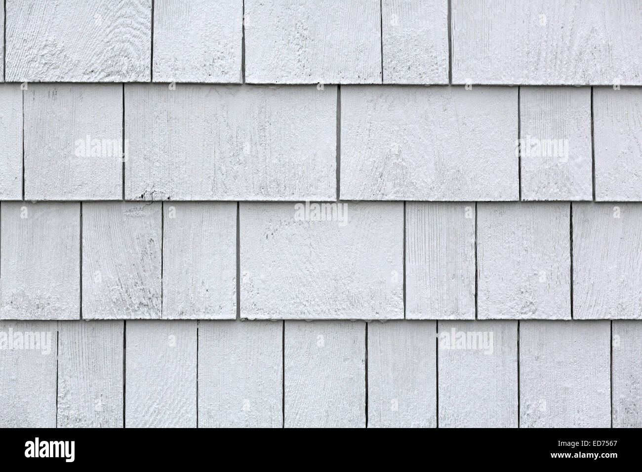 Preferred Rows of damp whitewashed cedar shingles after a rainstorm Stock  HM95