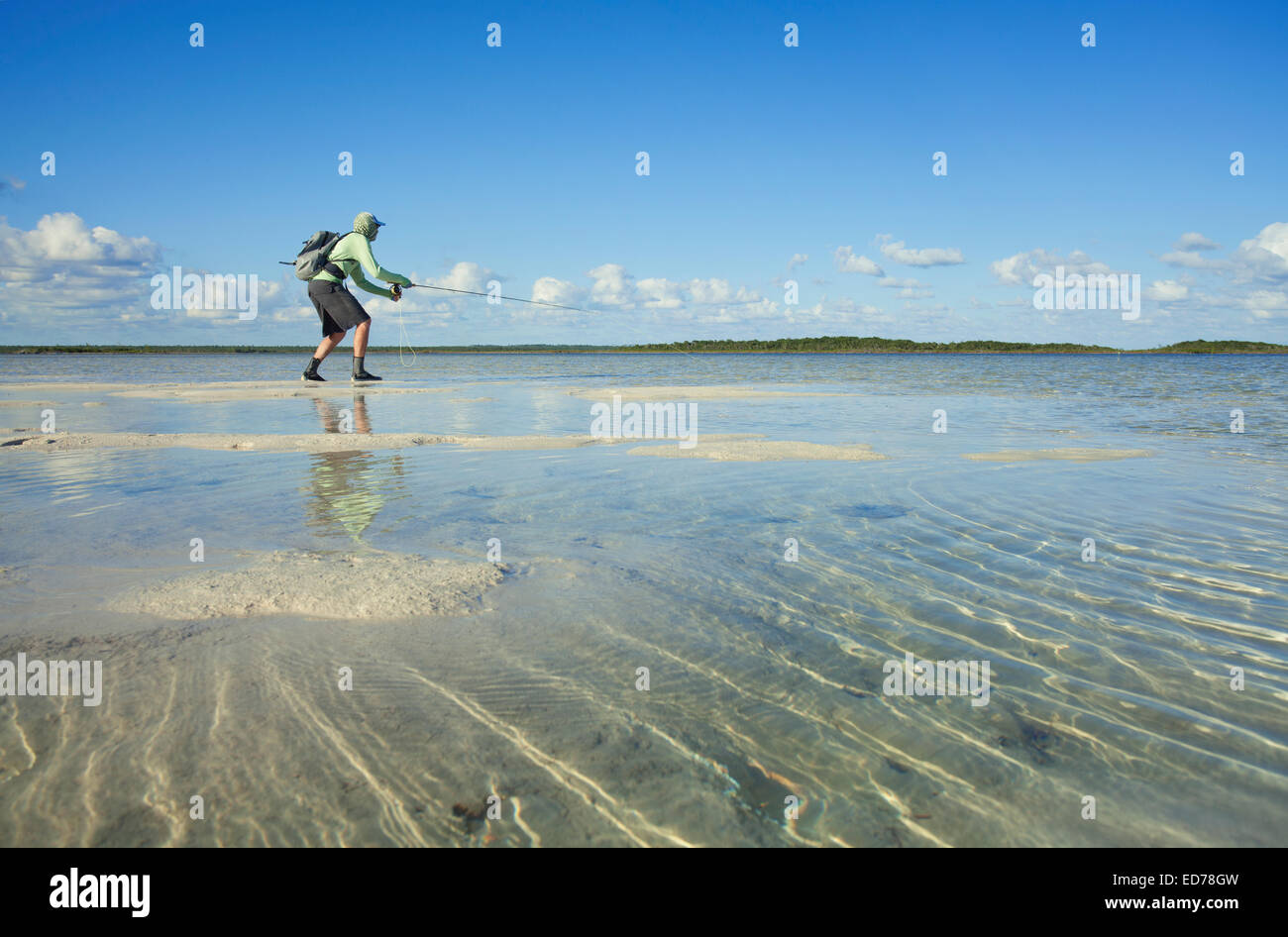 Saltwater fly fishing for bonefish on the island of Abaco in the Bahamas - Stock Image