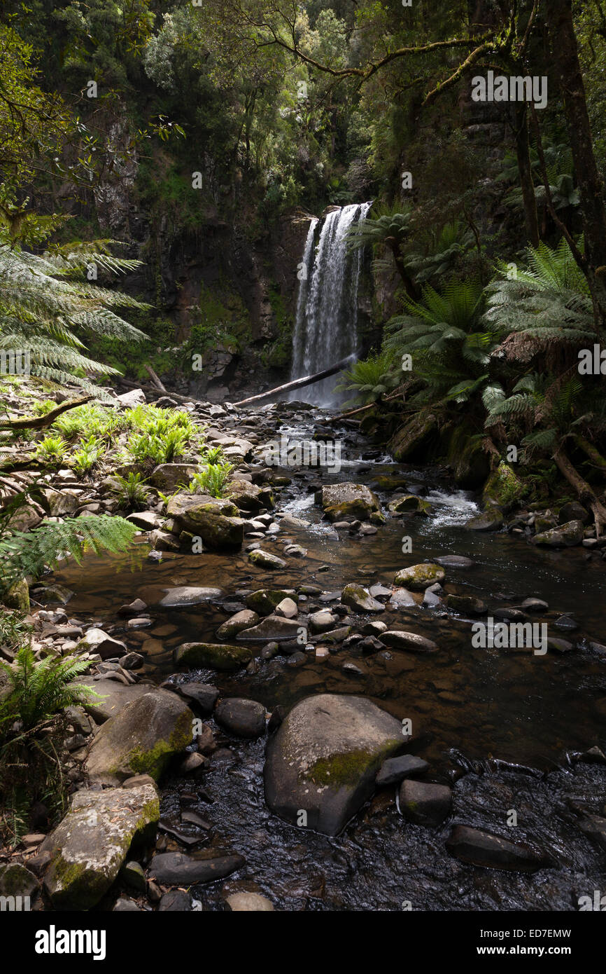 The Hopetoun Falls is a waterfall across the Aire River that is located in The Otways region of Victoria, Australia. - Stock Image