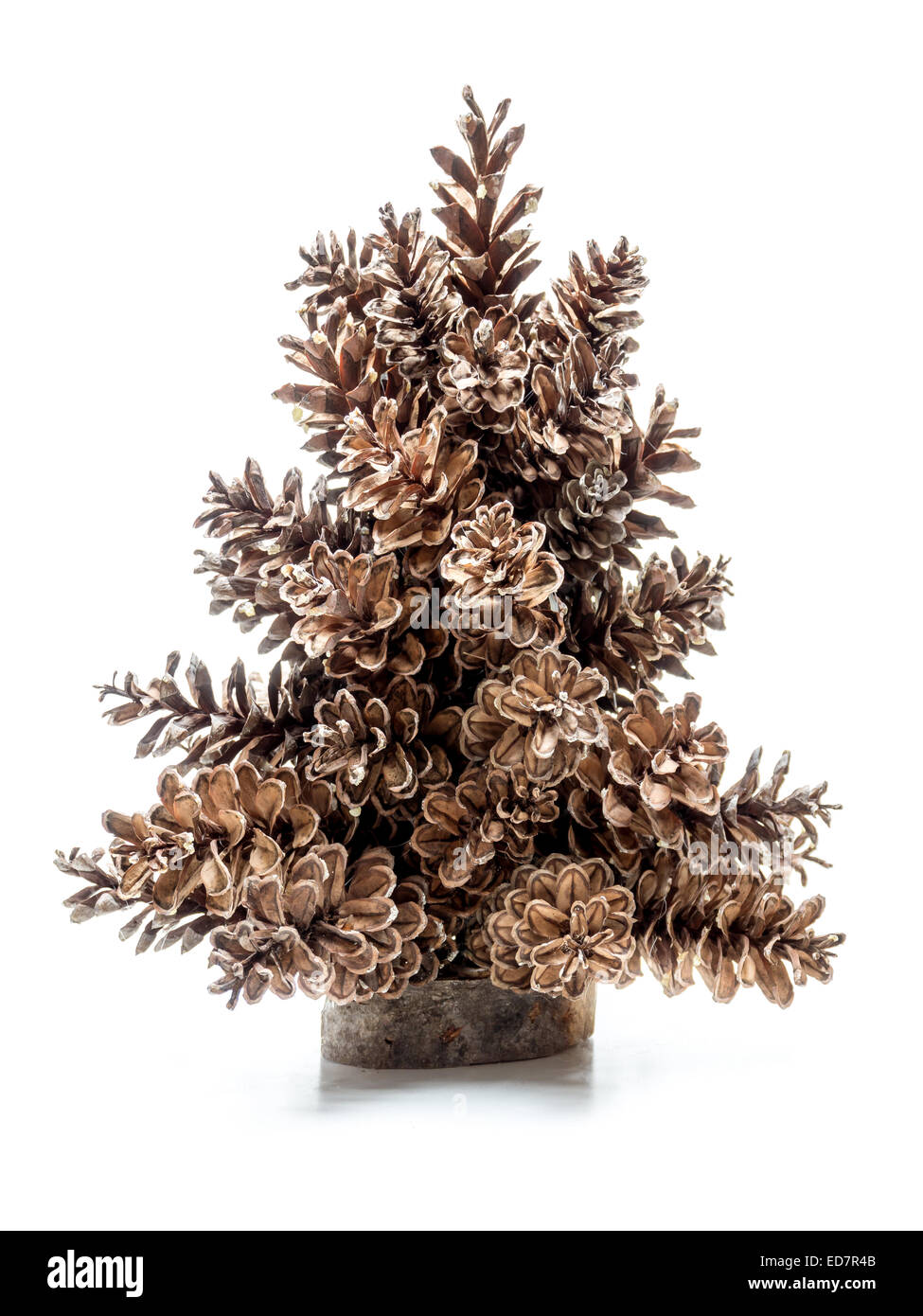 Miniature christmas tree made of spruce cones over white background - Stock Image