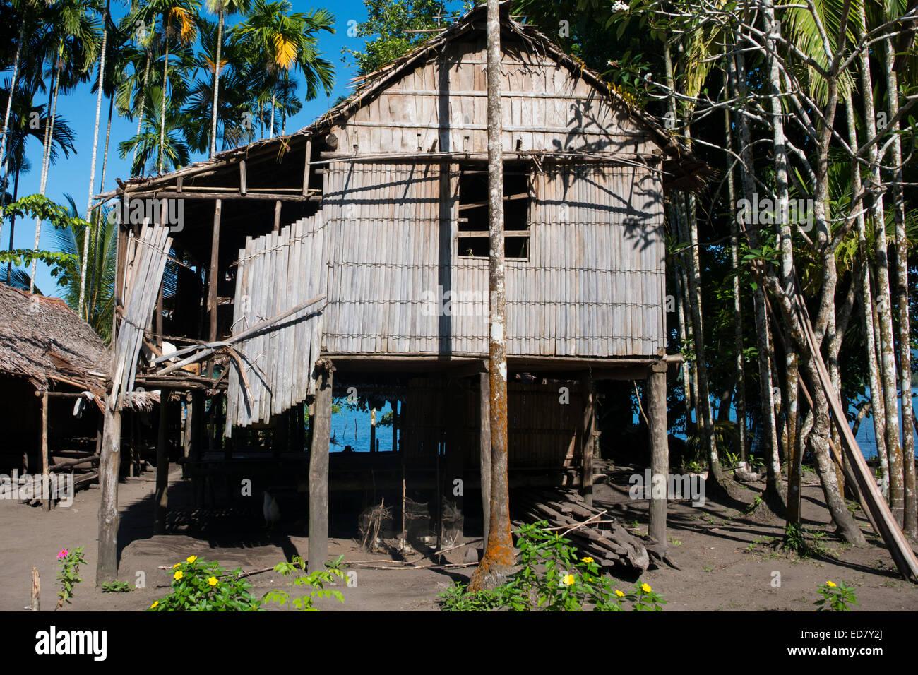 Log Building Houses Papua New Guinea