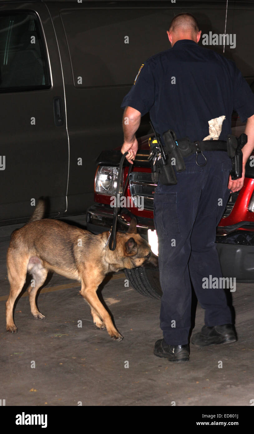 Menomonee Falls Police K-9 searching for drugs on a car in a parking garage - Stock Image