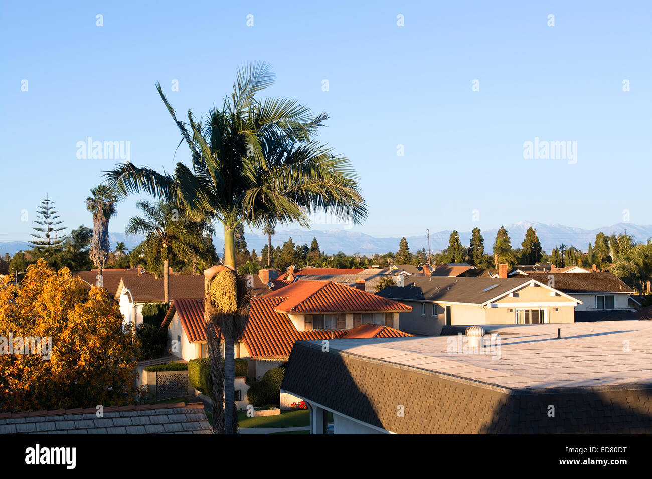 A residential tract of homes during an early morning sunrise. - Stock Image