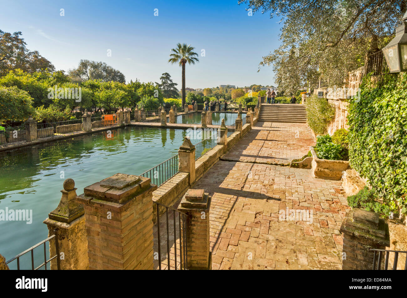 CORDOBA SPAIN THE ALCAZAR GARDENS OF THE CHRISTIAN MONARCHS AND FISH PONDS - Stock Image