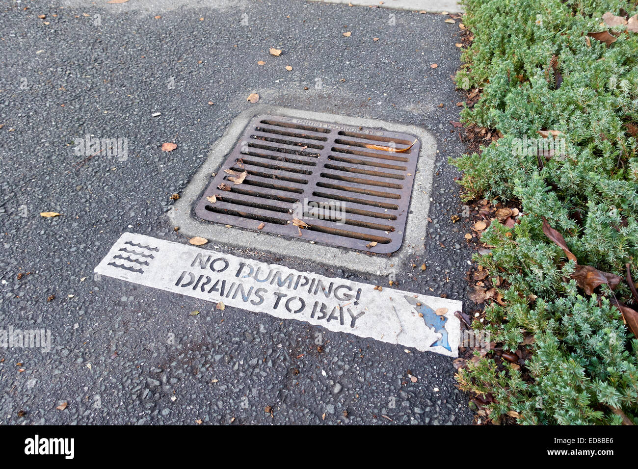 Storm drain marker, no dumping drains to bay, California, USA - Stock Image