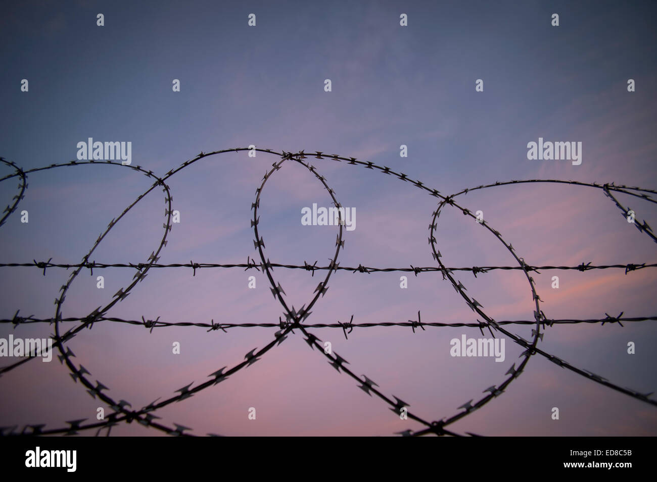 barbed wire, razor wire security fence - Stock Image