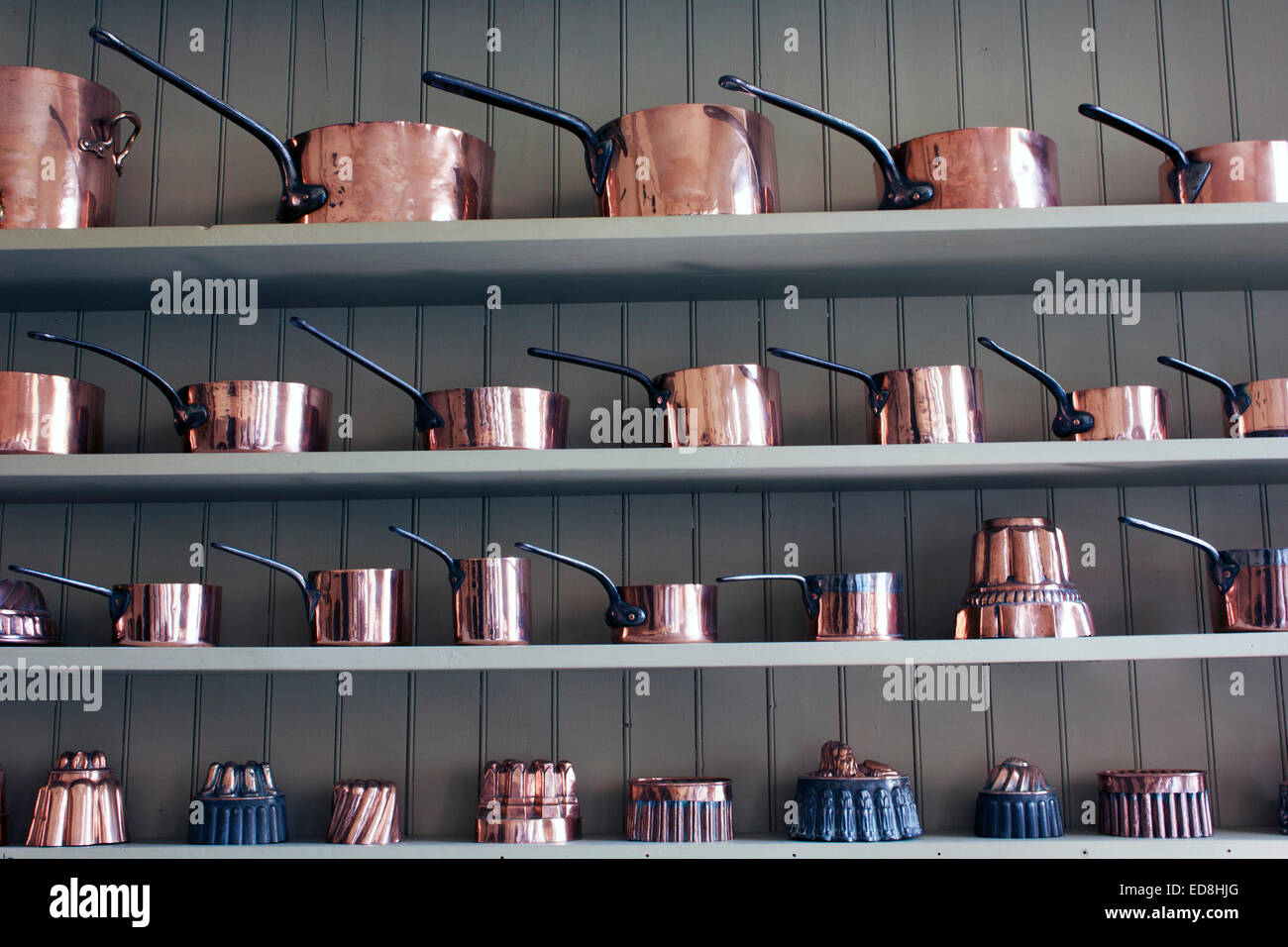 Copper Pots And Jelly Moulds Lined Up On Kitchen Shelf In England