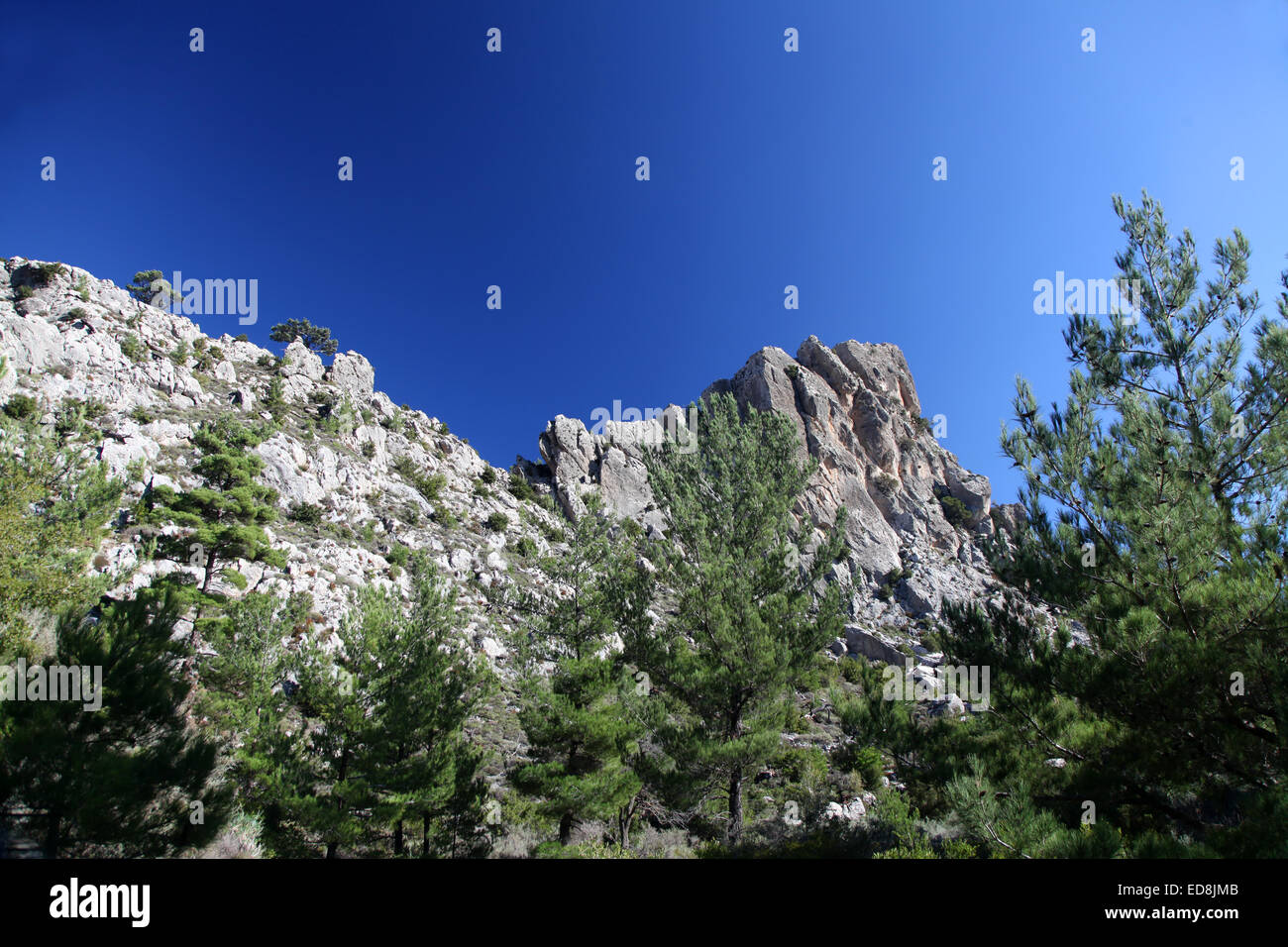 Craggy mountaintops and pine trees characterise the Cretan landscape - Stock Image