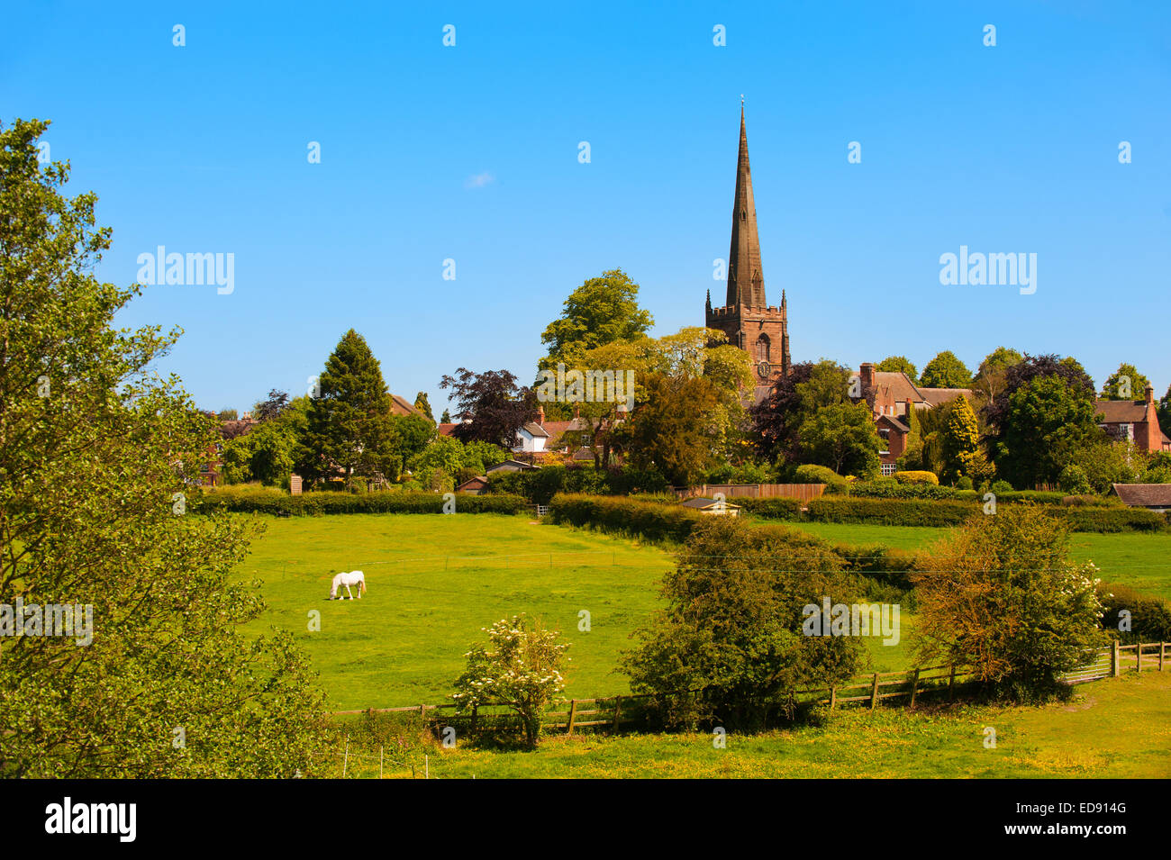 The church of St Mary and St Chad in the village of Brewood, Staffordshire, England. - Stock Image