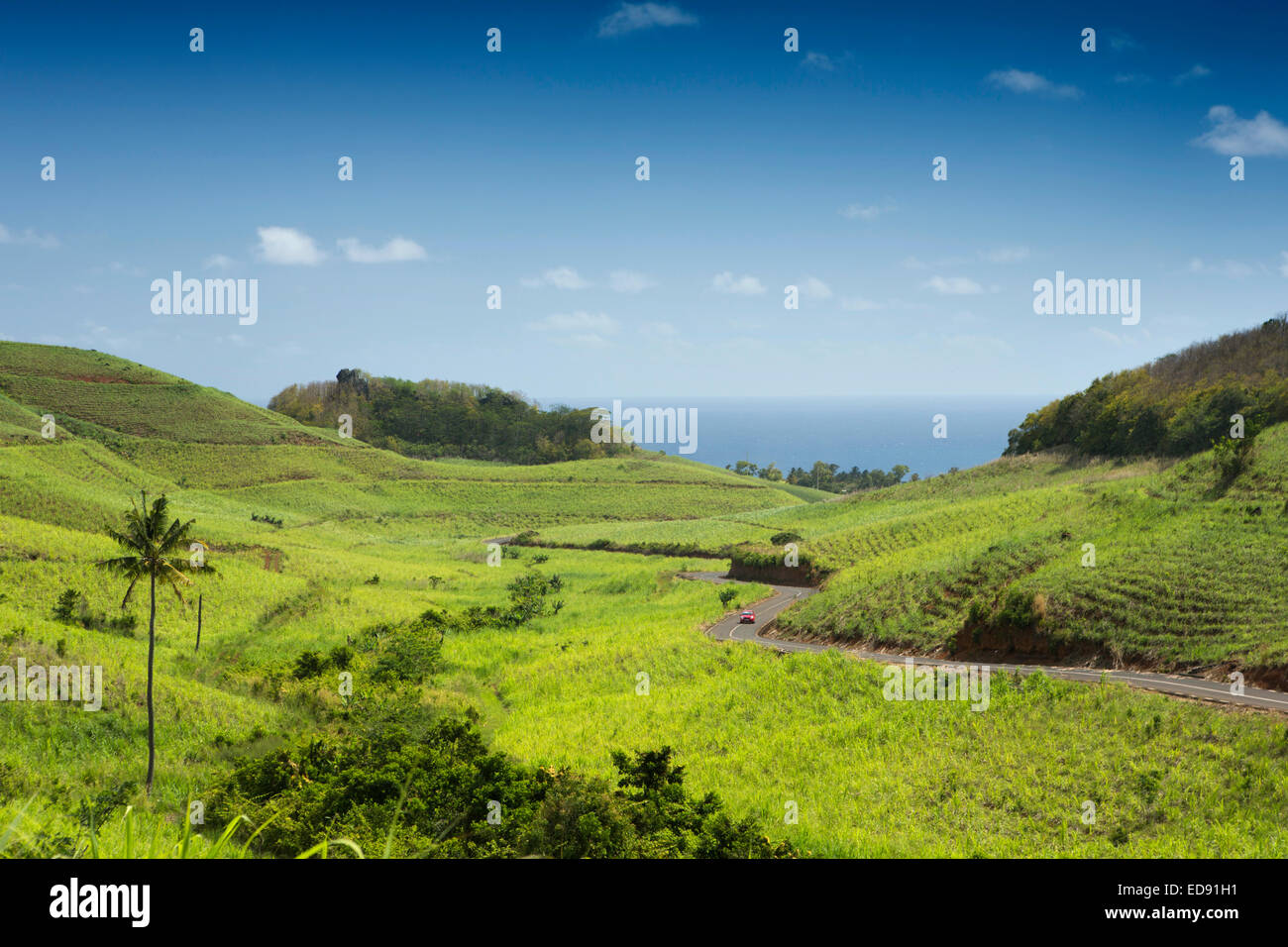 Mauritius, Bel Air, road from Maconde through hilltop sugar cane fields - Stock Image
