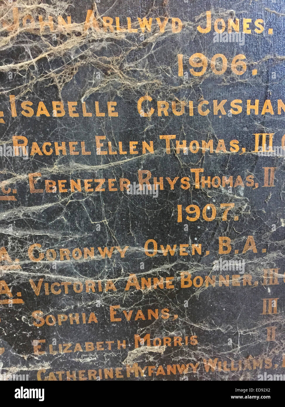 Dusty cobwebs covering names of people on an old 'honours board'  dated  1906 and 1907 from a grammar school, - Stock Image