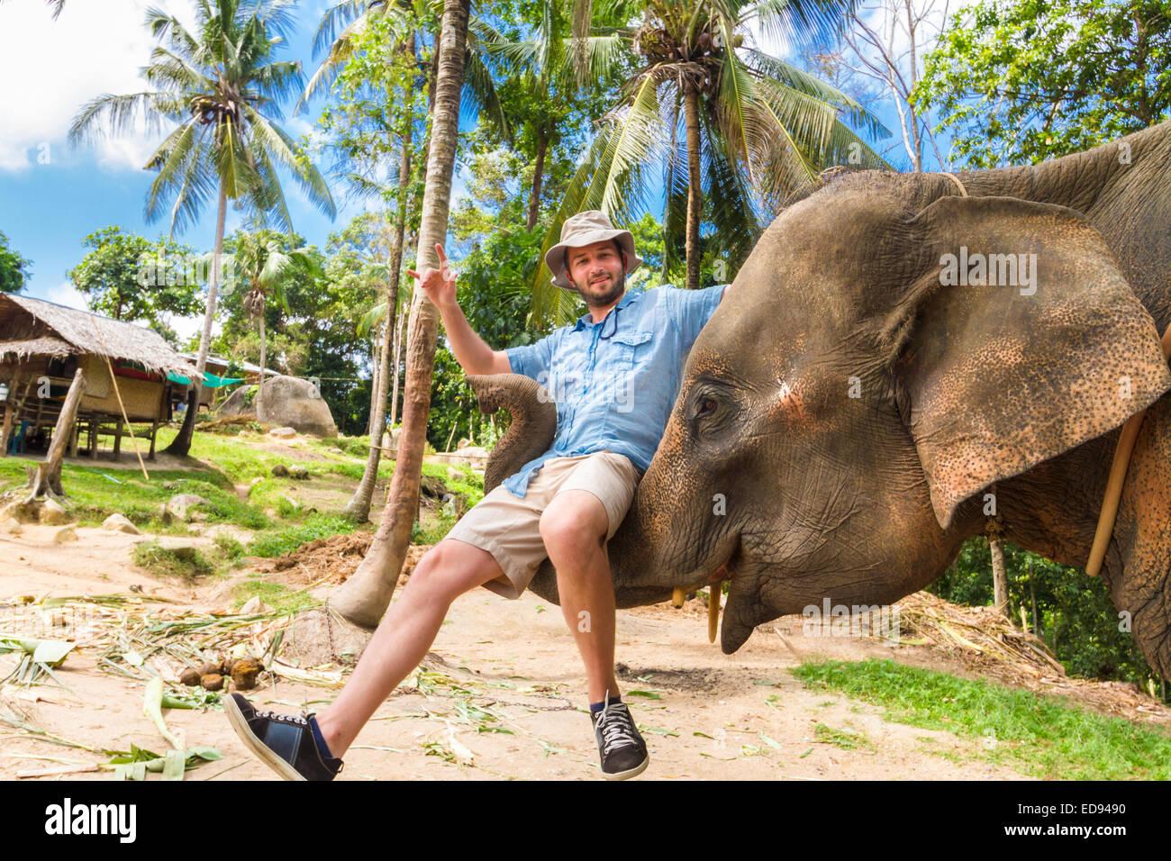 Elephan lifting a tourist. - Stock Image