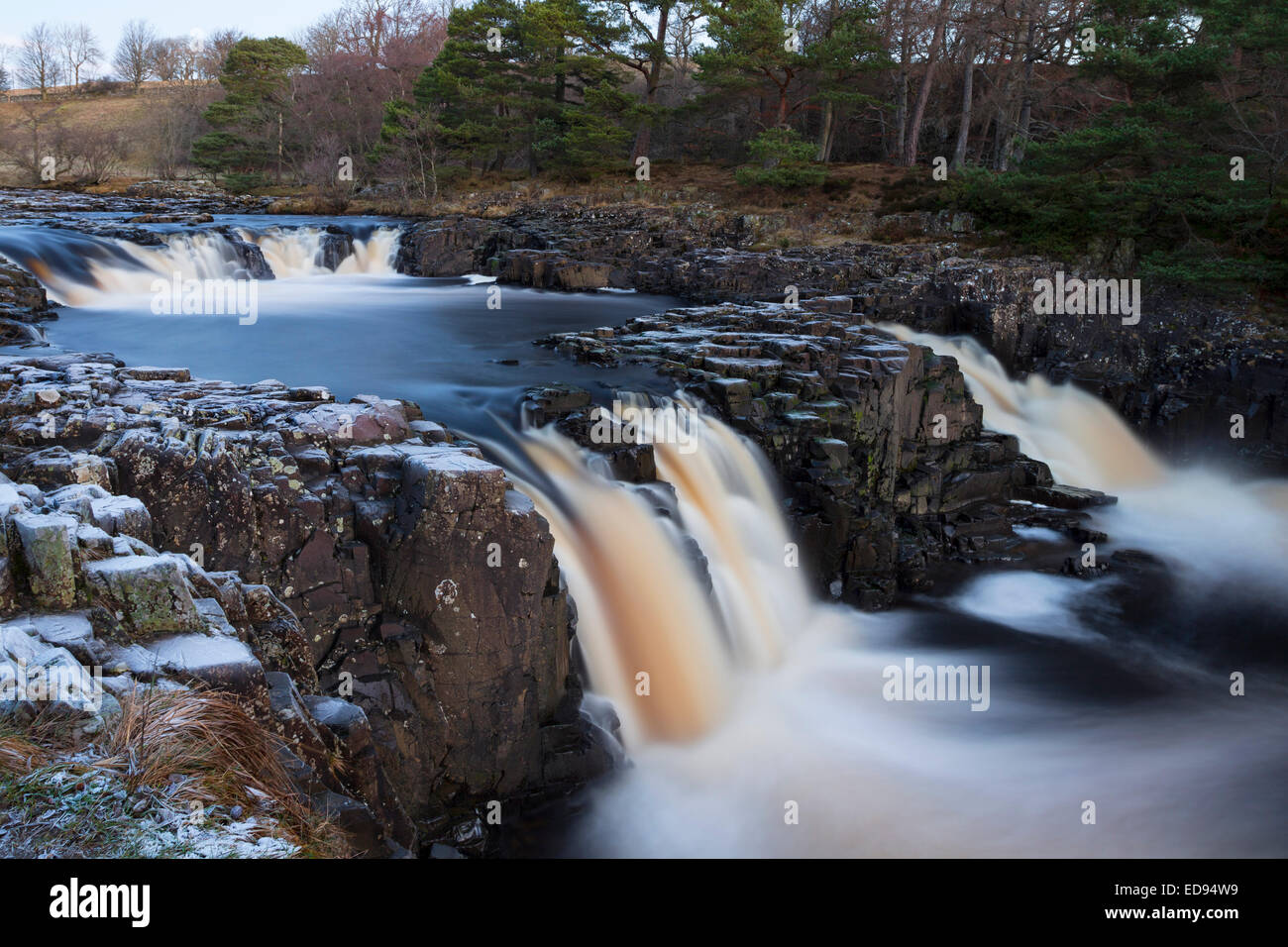 The River Tees Flowing Over the Whin Sill Rocks of Low Force, Bowlees Upper Teesdale County Durham UK - Stock Image