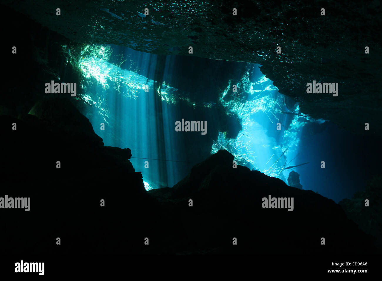 Sunbeams Breaking Through the Surface in Chac-Mool Cenote, Playa del Carmen, Mexico - Stock Image