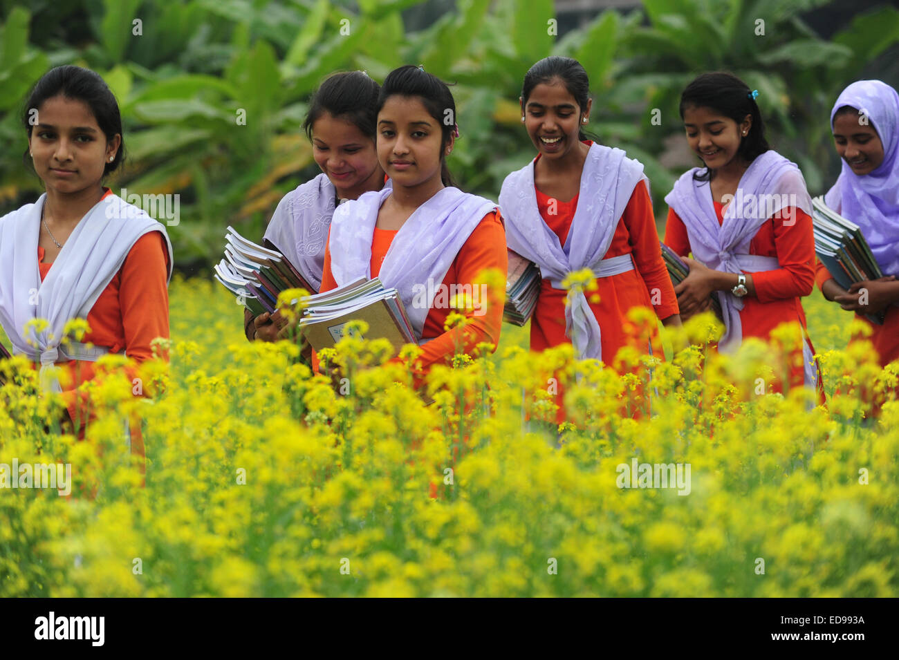 Bangladeshi Village Girls Are Going To School In The Muster Field With Textbooks Outside Of Dhaka