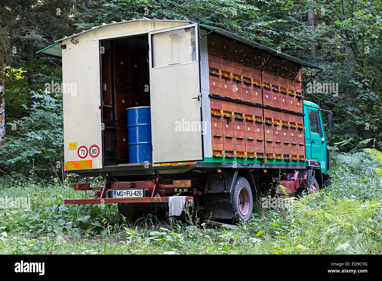 Beehives built into lorry parked in forest, Cerknica, Slovenia - Stock Image