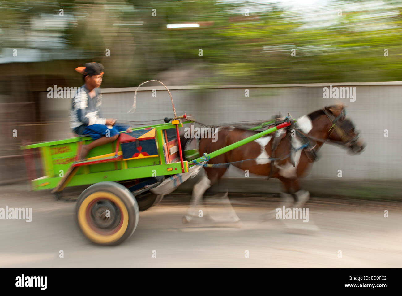 Horse cart on Gili Air island, Indonesia. - Stock Image