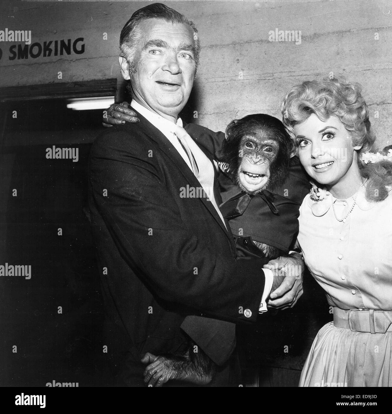File. 2nd Jan, 2015. DONNA DOUGLAS, who played hillbilly bombshell Elly May Clampett on the baby-boomer-beloved 1960s sitcom The Beverly Hillbillies, has died in her Louisiana home. She was 81. PICTURED - c. 1960's - Donna Douglas and Buddy Ebsen with chimp at Patsy Awards. Credit:  Globe Photos/ZUMAPRESS.com/Alamy Live News Stock Photo