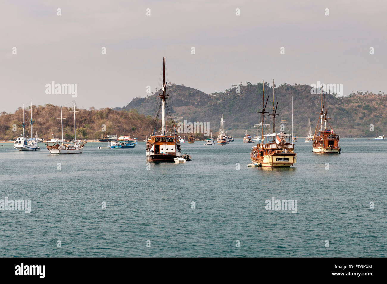 Boats anchored in the bay of Labuan Bajo on the island of Flores, East Nusa Tenggara, Indonesia. - Stock Image