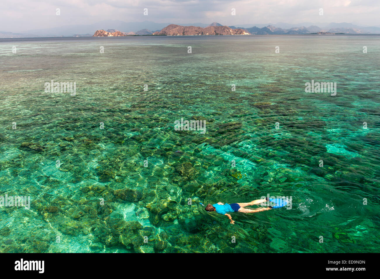 A tourist snorkeling in the waters off the western coast of Flores island, Indonesia. - Stock Image