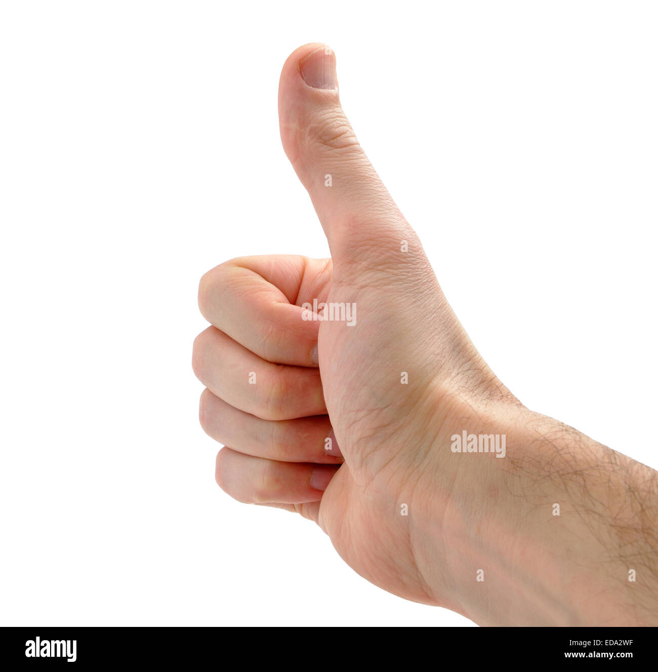 male hand showing thumbs up sign against white background - Stock Image
