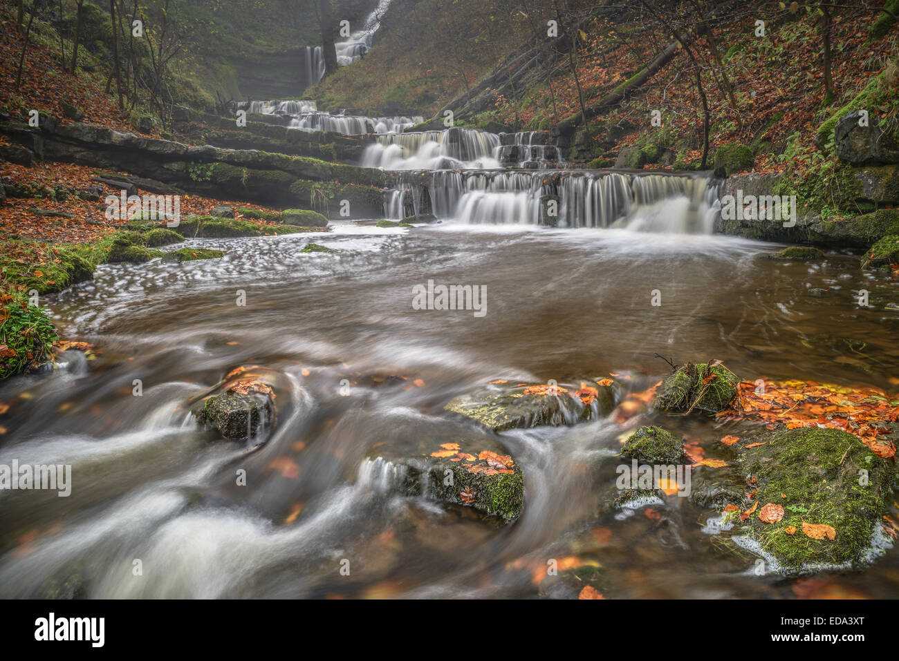 A series of smaller waterfalls at the famous Scalebar force, Yorkshire Dales - Stock Image
