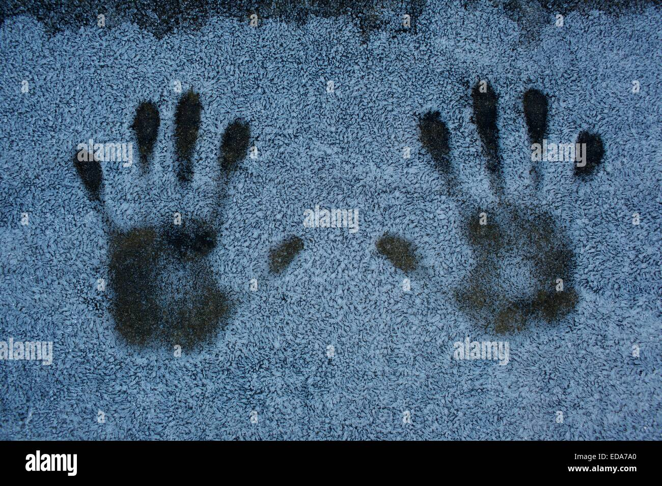 Child's hand prints made in frost, snow, on winters morning. - Stock Image