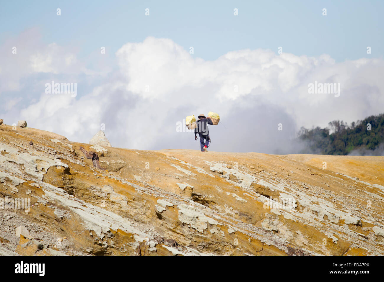 Sulfur porter carrying the heavy baskets down the volcano - Stock Image