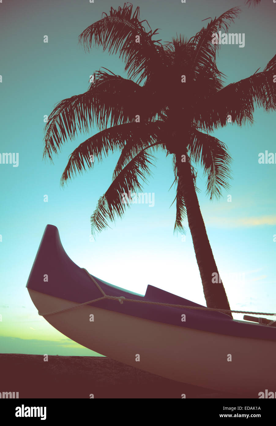 Outrigger Canoe And Palm Tree In Hawaii - Stock Image