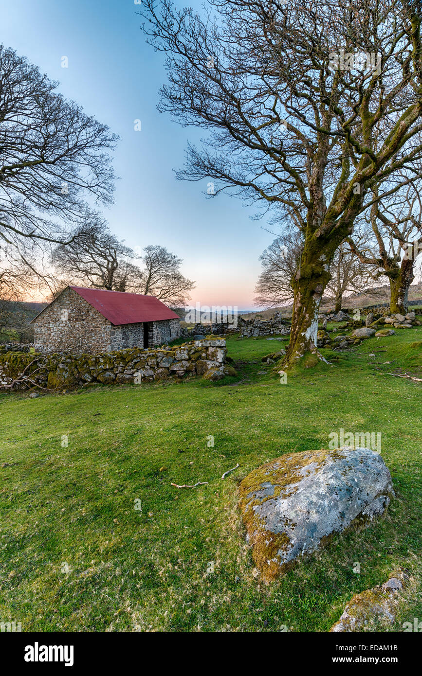 An old barn with a red roof at Emsworthy on Dartmoor National Park in Devon - Stock Image