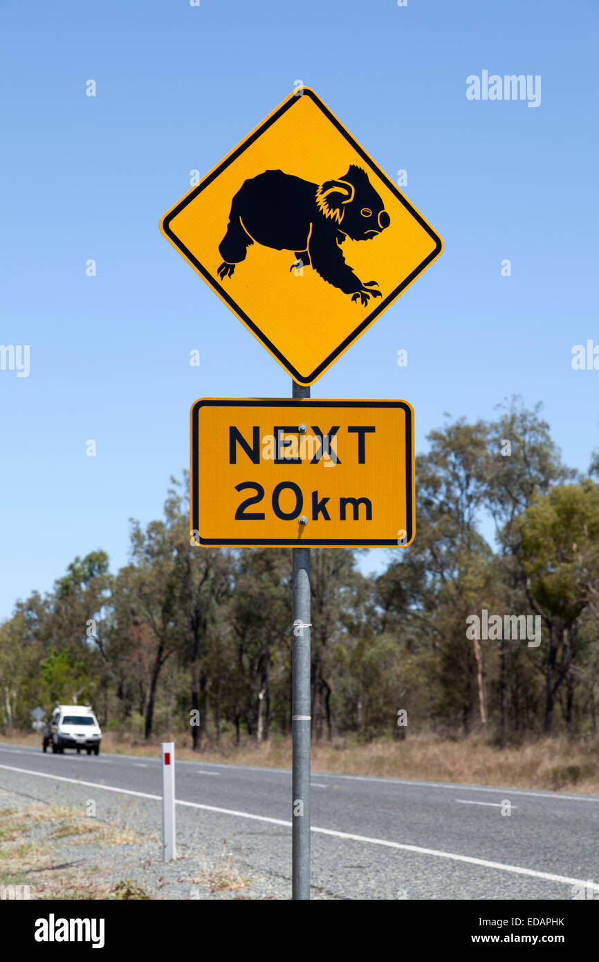Warning sign for koala in Queensland - Stock Image