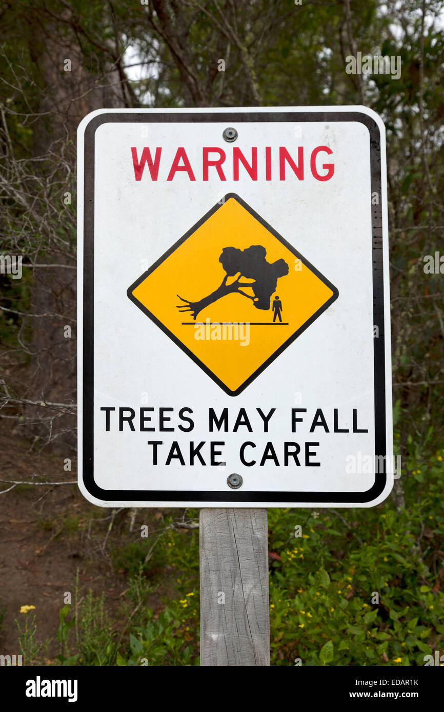 Warning sign for falling trees in Victoria, Australia - Stock Image