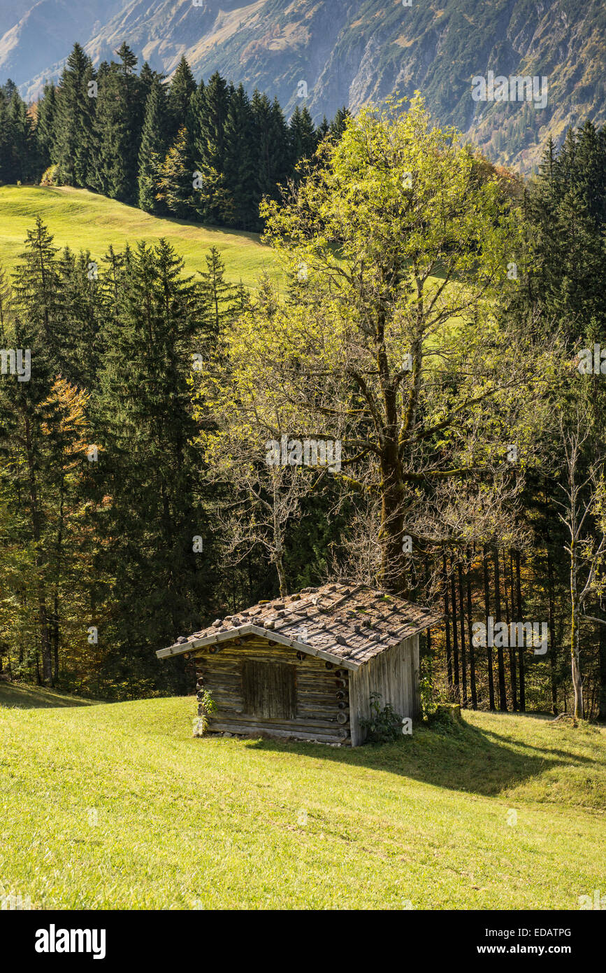 Wooden cabin on a green meadow in a Bavarian valley - Stock Image