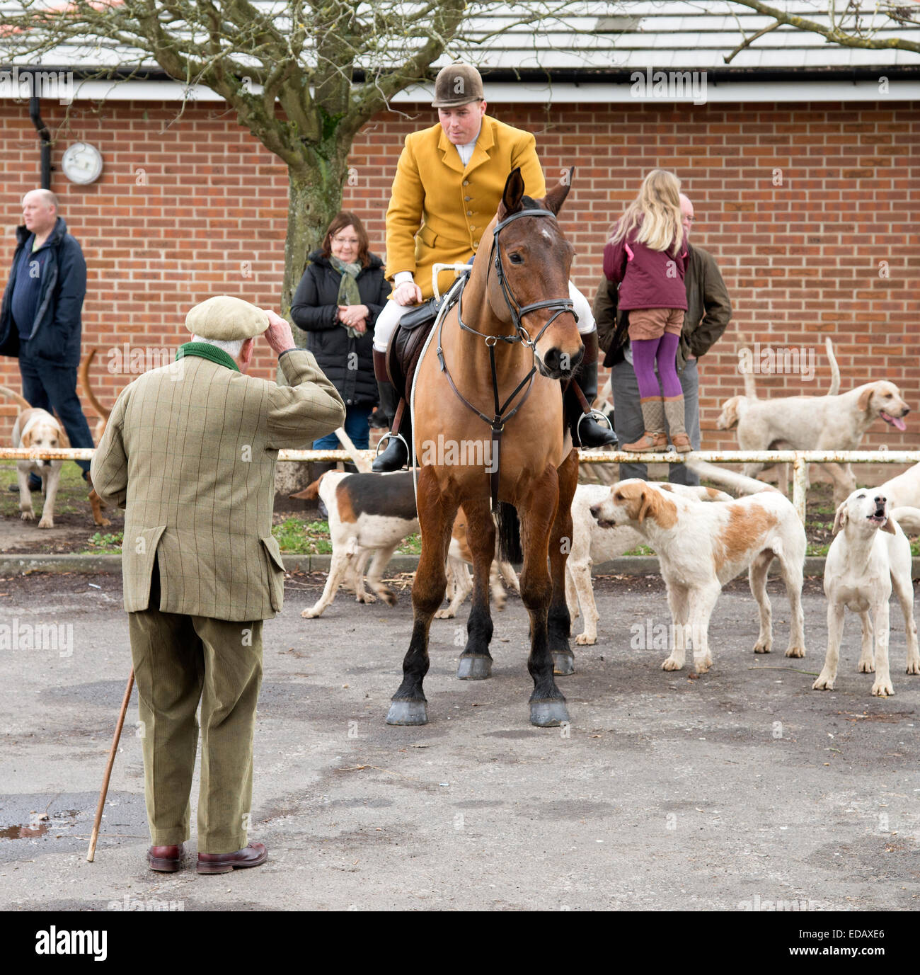 Man doffing his hat in respect to a huntsman and his hounds - Stock Image
