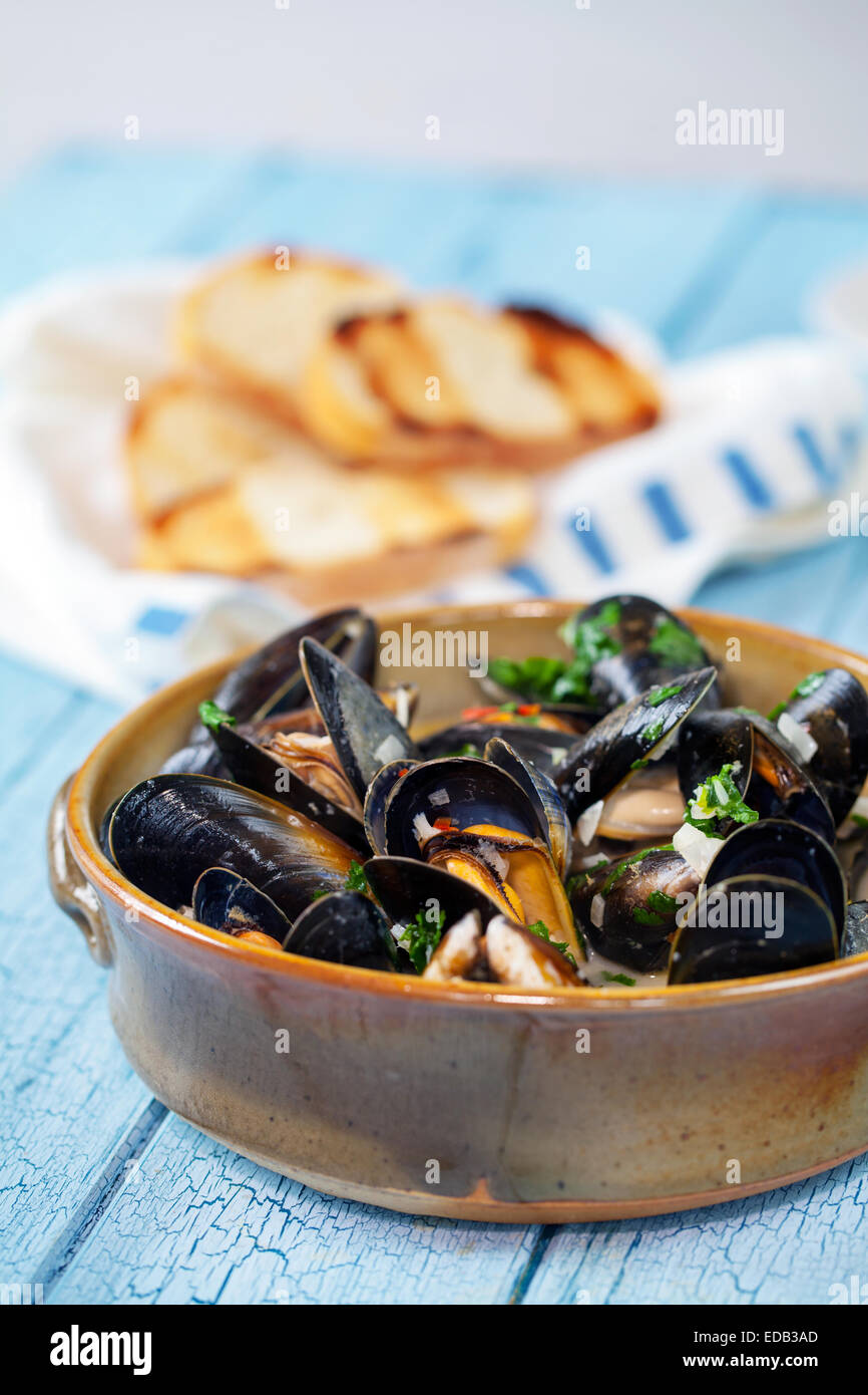 Bowl of steamed mussles - Stock Image