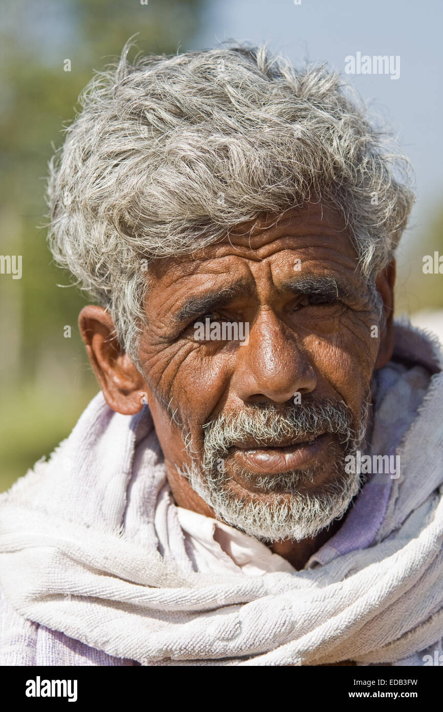 Asia, India, Karnataka, Somnathpur, Portrait of an Indian farmer - Stock Image