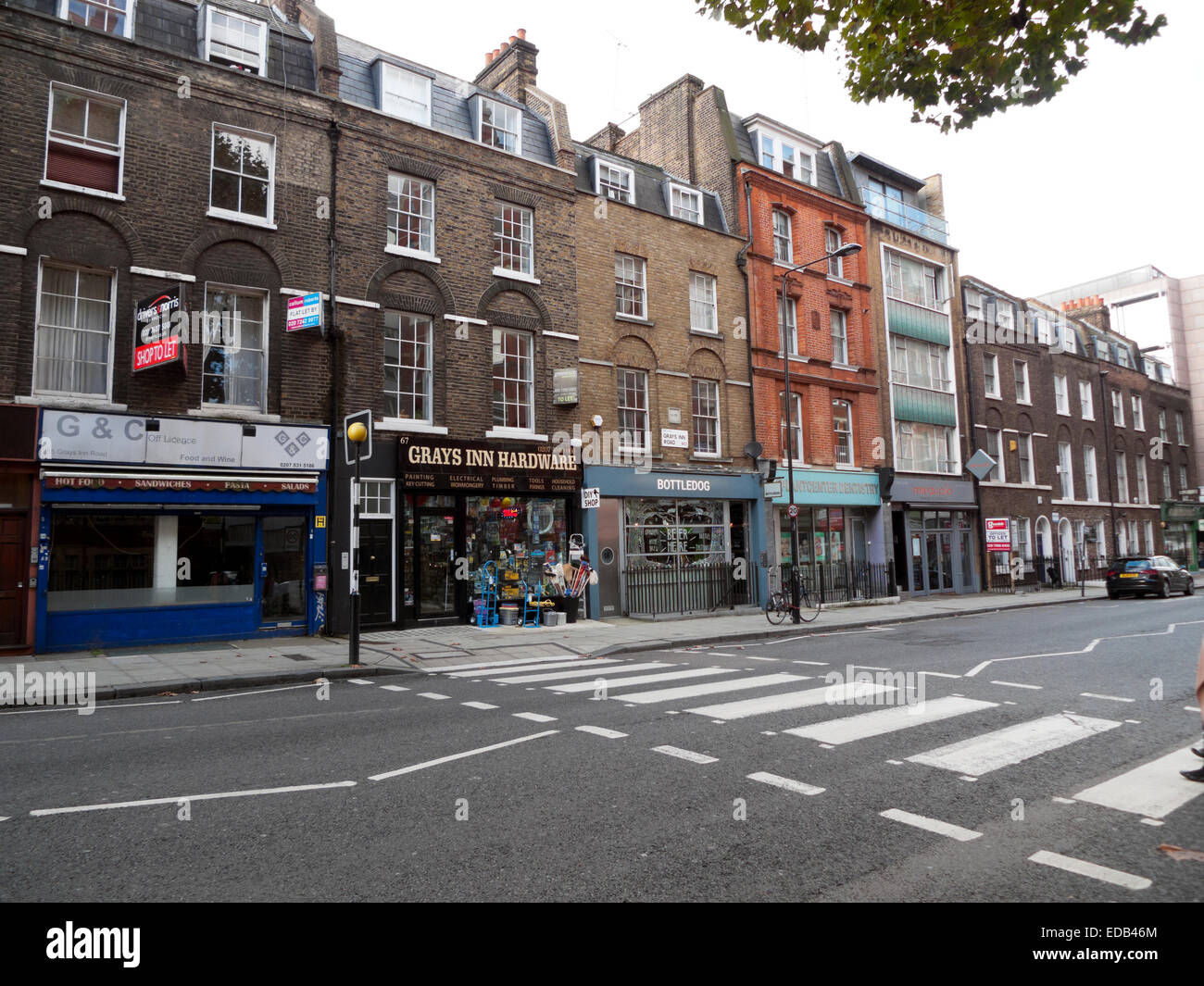 Pedestrian crossing, no traffic on empty road and shops on Gray's Inn Road in London KATHY DEWITT - Stock Image