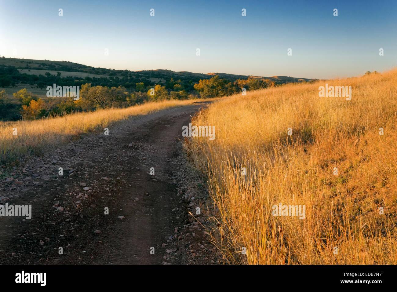 Country Road, Santa Cruz County, Arizona - Stock Image