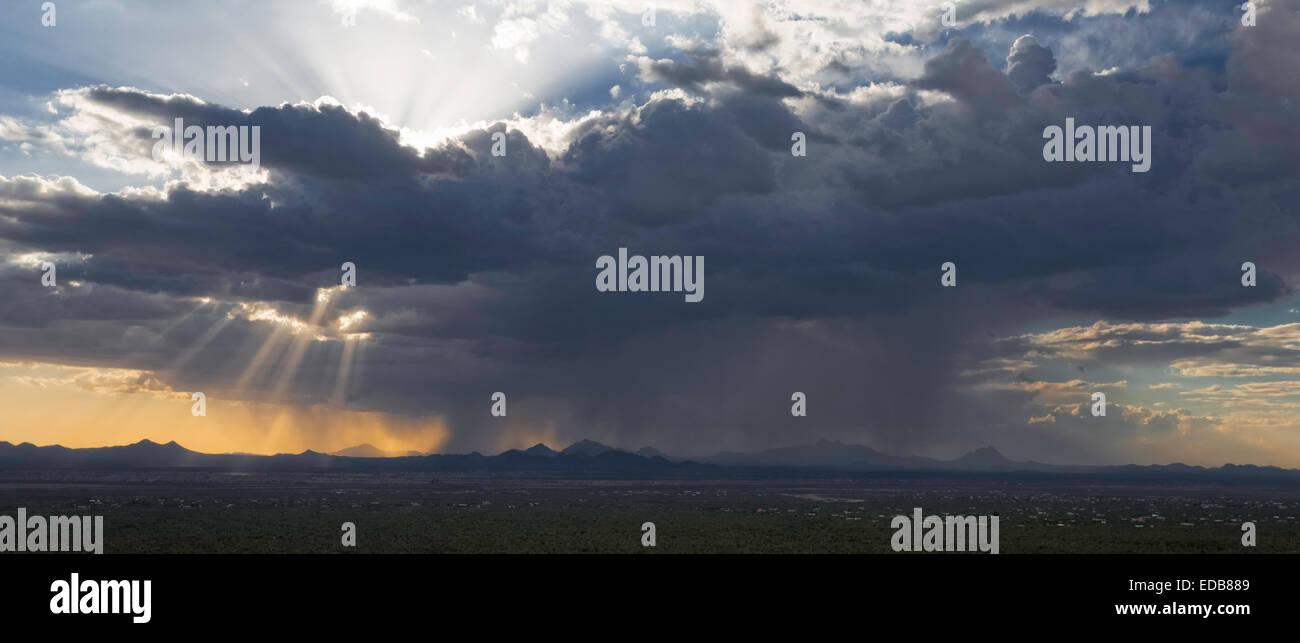 Distant rainstorm during the summer desert Monsoon, Saguaro National Park West, Tucson, Arizona - Stock Image