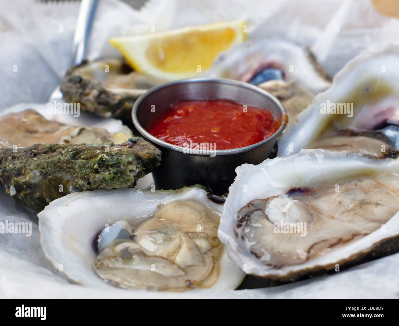 Close Up View of Oysters on a Half Shell, Baltimore, Maryland - Stock Image