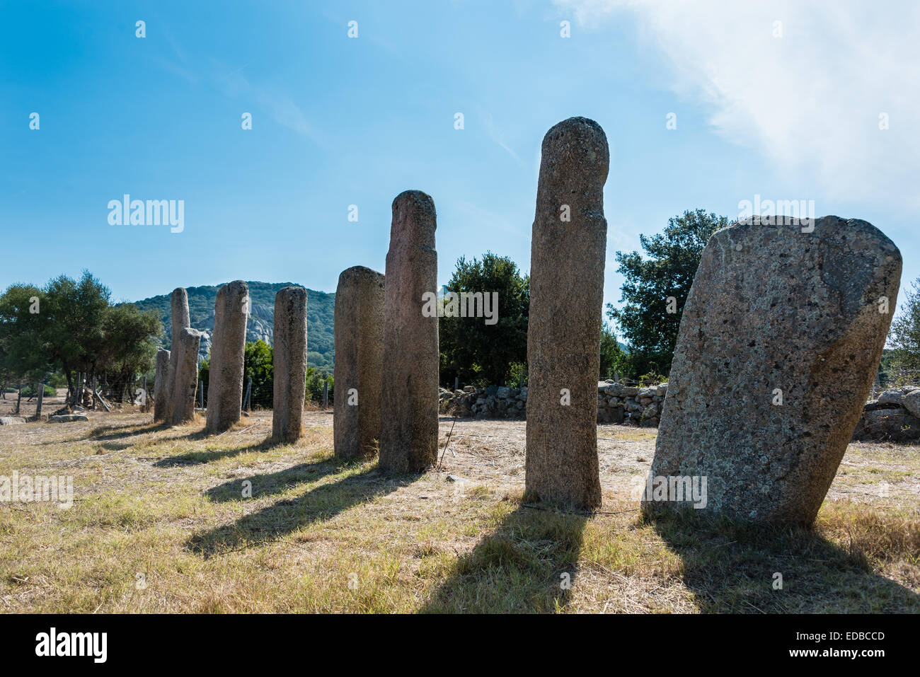 Prehistoric remains of Stantari, menhirs Alignment d 'Stantari, archaeological site of the Neolithic period, - Stock Image
