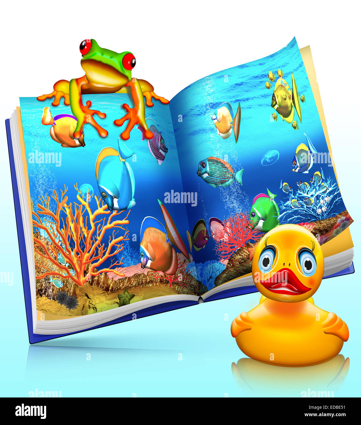 Coral reef, coral fish, red-eyed tree frog, children's book with a rubber duck - Stock Image