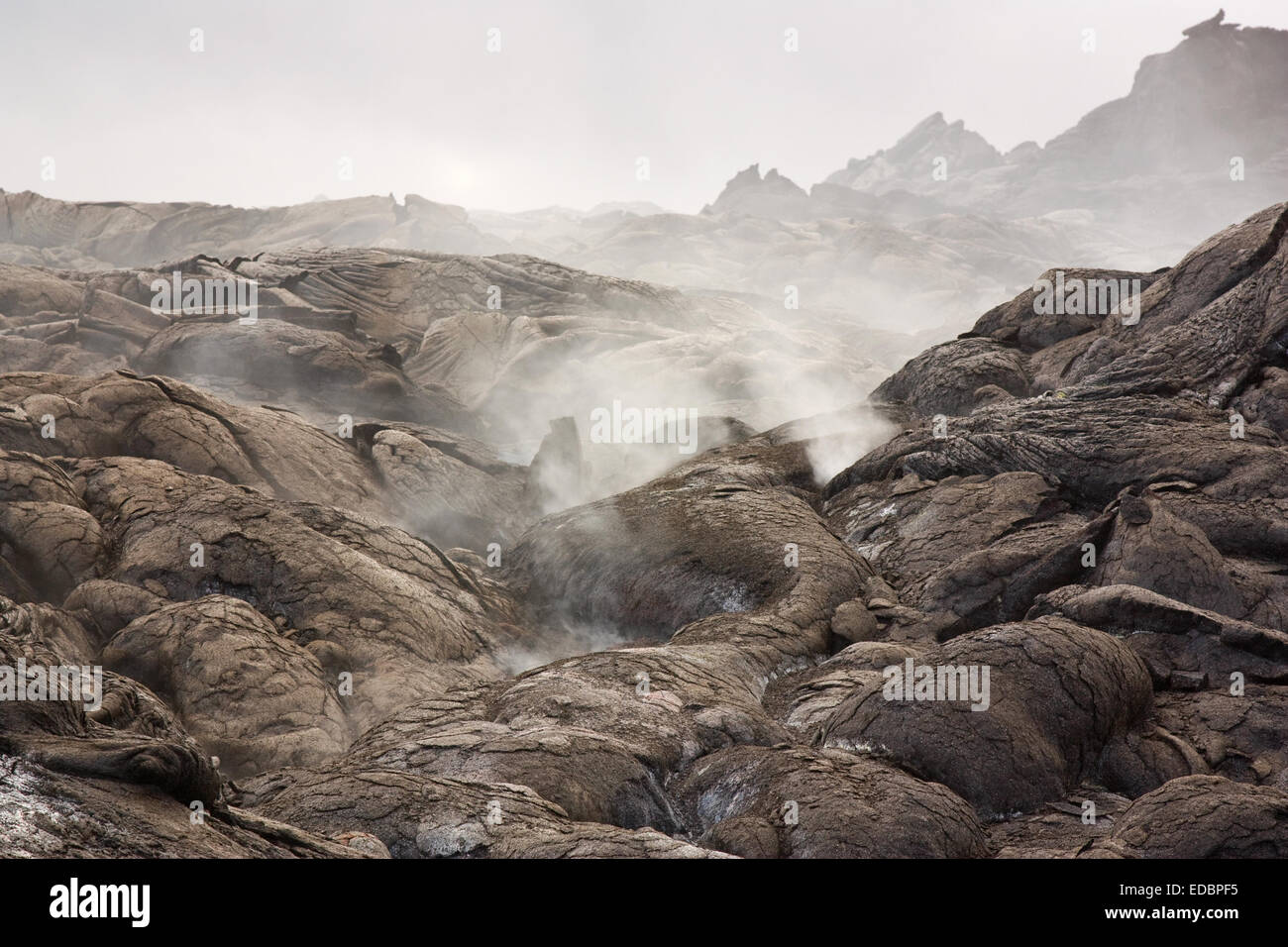 Hazardous sulfurous volcanic gases emerging from the ground near active lava flow in Hawaii. - Stock Image