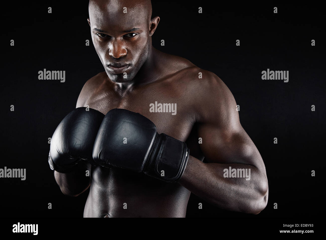 Powerful boxer posing and looking tough against black background. African muscular man practicing boxing workout. - Stock Image